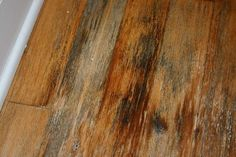 Remove Mold Stains From Wood Floors Remodeling Problems