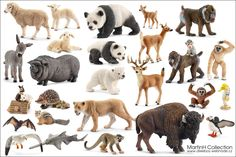 Schleich-2014 so excited for the primates! It's about time. The bat and pot bellied pig are also cool