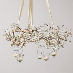 A simple light fixture made out of tree branches, ribbon and candle holders...perfect for an outdoor wedding or party.