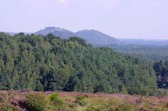 Natuurgebied Mechelse Heide (Maasmechelen) - Agentschap voor Natuur en Bos