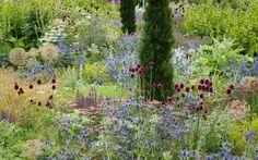 Foto del día: Bordura inglesa en Helmsley Walled Garden. The Hot Border | El…