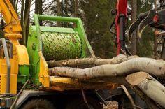 Pappelstämme im Einzug vom Heizohack 14-800 KTL, der mit 120cm Breite und 80cm Höhe auch dickere Stämme kleinhäckselt