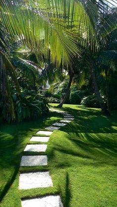 jardin paysager, jardin paysagé exotique
