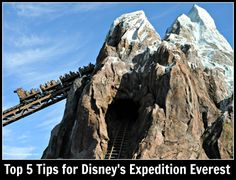 Expedition Everest Legend of the Forbidden Mountain at Walt Disney World's Animal Kingdom theme park, ride information, descriptions, tips and more.
