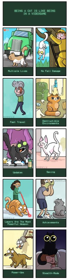 Being a cat is a lot like being in a video game.