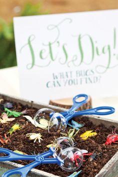 Bug Hunt Birthday | Let's dig for bugs!