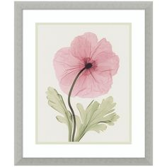 Iceland Poppy I Framed Wall Art (£135) ❤ liked on Polyvore featuring home, home decor, wall art, silver, floral home decor, poppy wall art, vertical wall art, poppy home decor and framed floral wall art