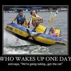 We're going tubing, don't forget the cat