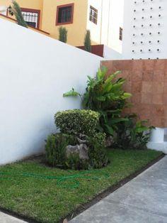 1311113643_216115938_2-Fotos-de--Cerca-liverpool-3-hab-2-banos-sala-doble-altura-jardin-trasero-calle-privada-fte-parque.jpg (469×625)