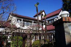 やっと、青空の下で散歩をすることができた。 荻窪駅から西荻窪駅まで、杉並区の住宅...