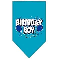 Birthday Boy Screen Print Bandana Turquoise Large