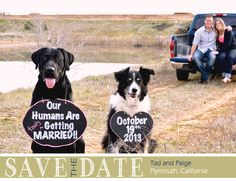 Our Save the Date for wedding in October. #wedding #rustic #Dogs #savethedate