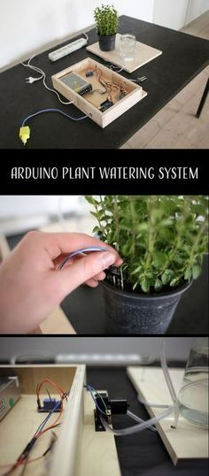How to make a plant watering system powered by Arduino. How to make a plant watering system powered by Arduino. How to make a plant watering system powered by Arduino. Arduino Bluetooth, Diy Arduino, Esp8266 Arduino, Arduino Led, Arduino Programming, Arduino Books, Arduino Stepper, Cool Arduino Projects, Arduino Beginner