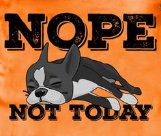 Dog Cartoons, Cartoon Dog, Cartoon Images, Boston Terrier Pug, Terrier Puppies, Dog Art, Dog Pictures, Puppy Love, Doggies