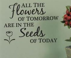 A garden quote ~ I thought that it's also about teachers and parents. They plant the SEEDS, which BLOSSOM later on. Teachers may never see the end result, but their job of planting the seeds of learning each day, The Words, Decoration Inspiration, Garden Inspiration, Sign Quotes, Me Quotes, Bloom Quotes, Farm Quotes, Flower Quotes Love, Flower Sayings