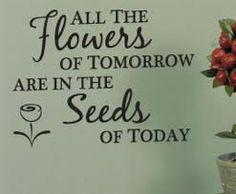 A garden quote