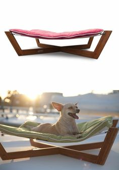 Modern Pet Lounger Hammock