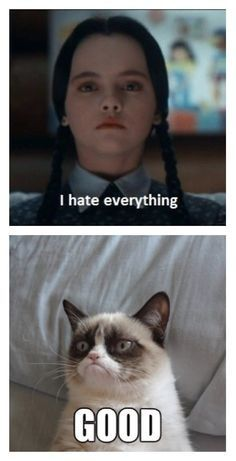 Meme related evidence that Wednesday will always be relevant. | Community Post: 18 Times Wednesday Addams Was The Hero Young Girls Needed