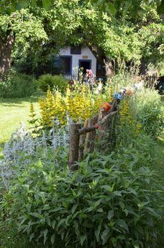 U Vyšaty Chlumany Plants, Plant, Planets