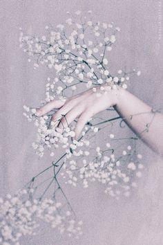 Little white flowers by NataliaDrepina.deviantart.com on @DeviantArt