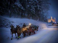 Horse sleighride by night (Gstaad  Switzerland)