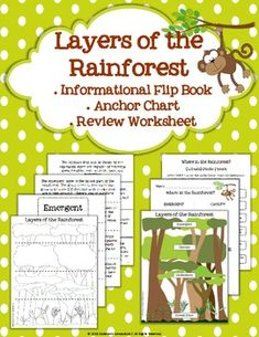 Rainforest Biome/Habitat Layers: flip book, anchor chart, and worksheet Rainforest Classroom, Rainforest Activities, Rainforest Theme, Jungle Theme, Biomes, Teaching Science, Teaching Ideas, First Grade, Grade 1