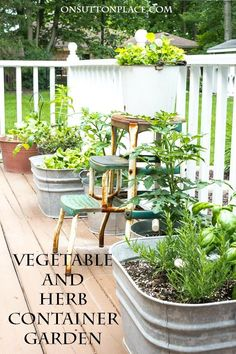 Easy Container Gardening | Vegetables and Herbs | Tips for growing a garden in containers. Plant suggestions and more!