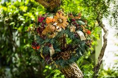 This Living Wreath is both beautiful and unique. Watch Home & Family weekdays at 10a/9c on Hallmark Channel!