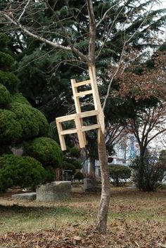 What if chairs really did grow on trees?