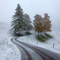 The First Snow, photographie de Sergey Ershov