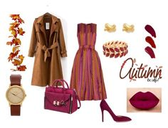 """""""Autumn brown"""" by ioanna35 on Polyvore featuring House of Holland, Charlotte Olympia, Diane Von Furstenberg, Kate Spade, Nixon and Ellis Faas"""