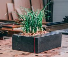 DIY Table Top Concrete Planter With Wood Inlay: I have always loved concrete, there are an endless amount of possibilities that you can do with this medium, tha Concrete Planters, Concrete Table, Diy Concrete, Diy Table Top, Papercrete, Build A Closet, Garage Lighting, Wood Burning Fires, Flower Lights