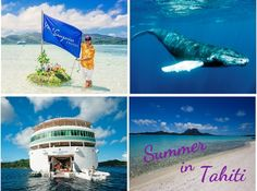Tahiti is the perfect exotic summer getaway. Paul Gauguin Cruises invites you to spend 7-nights in utopia. Spend the day snorkeling and sipping cocktails from a floating bar on their private island, Motu Mahana. From August to mid-November keep an eye out for the graceful humpback whales. Complimentary use of their beach in Bora Bora awaits – here you can snorkel, enjoy a game of volleyball, light refreshments, and admire picture-postcard views of Mount Otemanu.