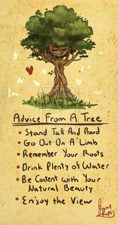 Advice from a tree.