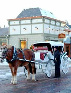 Carriage rides during Christmas in the Village. Zionsville Rocks....