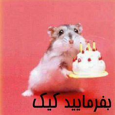 عکس و پیام برای تبریک تولد آبجی - تــــــــوپ تـــــــــاپ Belated Birthday Wishes, Happy Belated Birthday, Happy Birthday Pictures, Happy Birthday Funny, Happy Birthday Quotes, Happy Birthday Greetings, Birthday Messages, Funny Birthday Cards, Birthday Quotes Hilarious