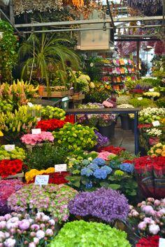 Bloemenmarkt,famoso mercado de flores en Amsterdam-Holanda