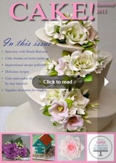 Online Magazine Issue 1 This site has lots of cake books you can read online!!