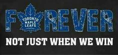 True blue til I die Us Hockey Team, Hockey Rules, Hockey Baby, Ice Hockey, Hockey Live, Hockey Girlfriend, Hockey Birthday, O Canada, Toronto Maple Leafs