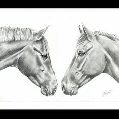 Pencil Custom Horse Drawing Chloe Brown, Contemporary Artwork, Pet Portraits, Original Artwork, Moose Art, Pencil, Horses, Pets, Drawings