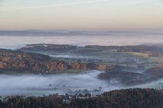 Albis | foggy autumn morning