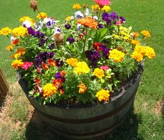 Flower Barrel with pansy Garden Language of Flowers Container Flowers, Flower Planters, Container Plants, Container Gardening, Flower Pots, Succulent Containers, Fall Planters, Vegetable Gardening, Wine Barrel Garden