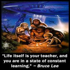 """Life itself is your teacher, and you are in a state of constant learning."" ~ Bruce Lee"