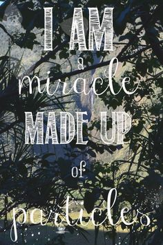 I am a miracle made up of particles.  And in this existence, I'll stay persistent.  And I'll make a difference.  And I will have lived it.