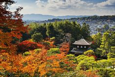 Ginkakuji, the Silver Pavilion. You Have to Eat These Dishes in Kyoto, by Boutique Japan. Ginkakuji, Japanese Temple, Japan Travel Tips, Visit Japan, All I Ever Wanted, Travel Companies, Kyoto Japan, Places To Visit, The Incredibles