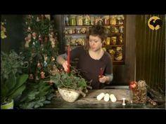 Ботаника. Композиция со свечами - YouTube