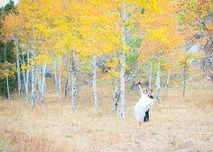 Love this photo by Sarah Lindsay Photography! Www.sarahlindsayphotography.com