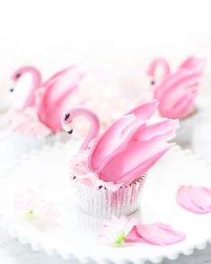 It went from fall to winter today ❄️🌬💨 I want summer back ☀️! And these pink flamingos 💖 wings made using pink candy melts Flamingo Cupcakes, Pink Flamingo Party, Flamingo Birthday, Pink Flamingos, Animal Cupcakes, Cupcake Cookies, Candy Melts, Wedding Cakes With Cupcakes, Birthday Cake Decorating