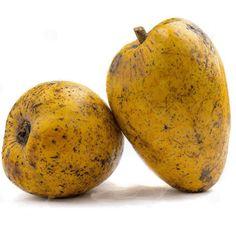 Inodorus  Cantaloupe GRÜNE HONIGMELONE 5 Samen Cucumis MElo v