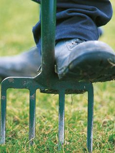 These 13 basic tools will help you tackle most garden jobs.